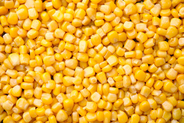Photo sur cadre textile Graine, aromate Ripe corn kernels as background, top view