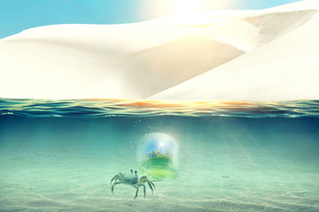 White sand dunes on the sunny sea coast