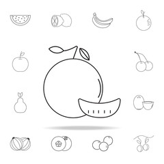 mandarin icon. Fruit icons universal set for web and mobile