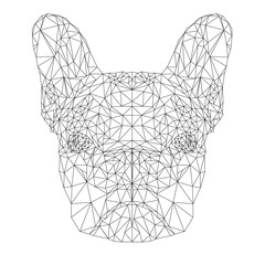 Vector Contour Illustration of French Bulldog in Low Poly Style