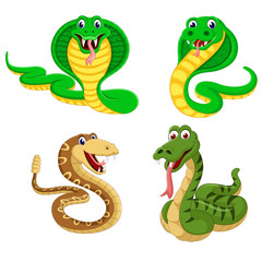 the collection of the big snakes in the different expression