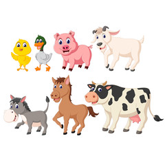 the collection of the livestock animals with the different species