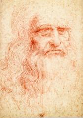 Leonardo da vinci portrait postcard