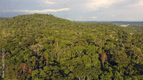 Rising up over the rainforest canopy in the Ecuadorian Amazon with Misahualli village and Rio Napo in upper right and cellular mast on hilltop. & Rising up over the rainforest canopy in the Ecuadorian Amazon with ...