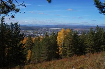 Landscape, forest, nature, sky, mountain