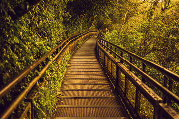 Metal walkway towards Iguazu Falls nature in Argentina in spring