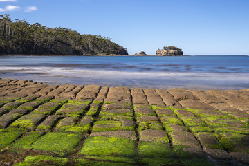 View of Tessellated Pavement in Pirates Bay, Tasmania.