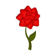 Isolated rose flower icon