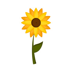 Isolated colored sunflower icon