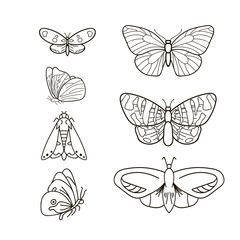 Butterfly set. Simple set of butterfly vector icons for web design isolated on white background