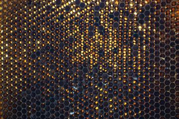 bee wax texture