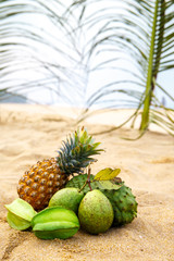 Green fruit under the leaves of a palm tree