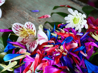 flowers and petals on a wooden background. Chaos and lack of composition