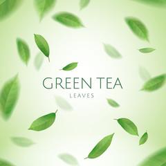 Green tea leaves wallpaper