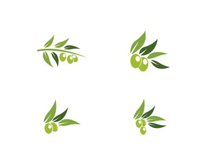 Set of Olive logo Template