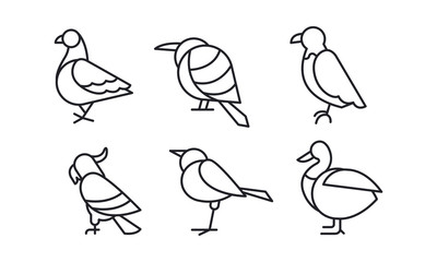Vector set of birds in linear style. Pigeon, sparrow, eagle, parrot, duck and colibri
