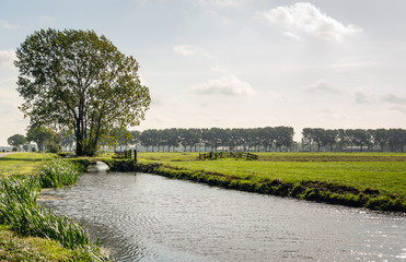 Backlit image of a typical Dutch polder landscape.