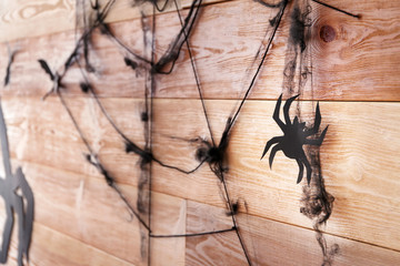 Spider with web as decor for Halloween party on wooden wall