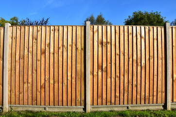 Wooden featheredge garden fence with concrete support posts