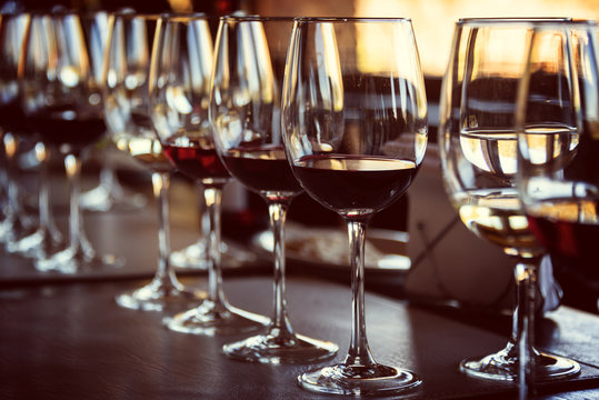 Close up of glasses of wine on a table during a wine tasting
