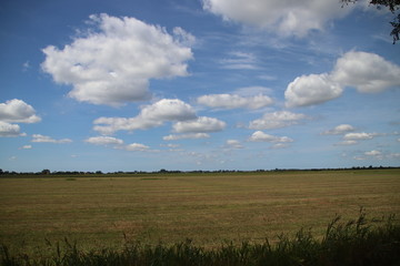 Big cumulus clouds above the meadows and fields of the Zuidplaspolder in the Netherlands.