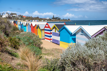 Brighton Beach colourful huts on a sunny day, Victoria, Australia
