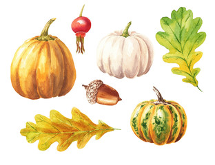 Hand drawn watercolor pumpkin set with red berry, acorn and leaves, isolated on white background. Food art illustration. Fall season clip-art, can be used for thanksgiving design.