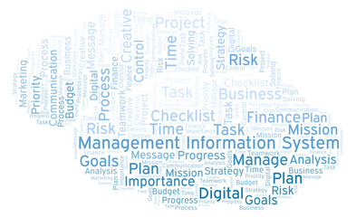 Management Information System word cloud, made with text only.