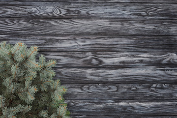 top view of beautiful evergreen fir twigs on wooden background