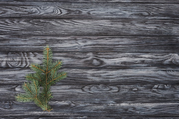 top view of beautiful evergreen fir twig on wooden background