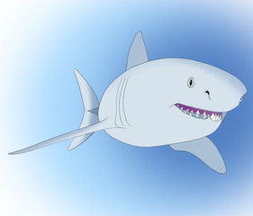 Großer Hai auf den blauen hintergrund.