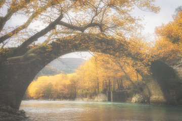Old stone bridge in Klidonia Zagoria, Epirus, Western Greece. This arch bridge with elongated arch built in 1853.