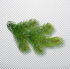 Spruce branch isolated on background. Christmas tree branch. Realistic Christmas Vector illustration. Design element for Xmas cards. New year party posters