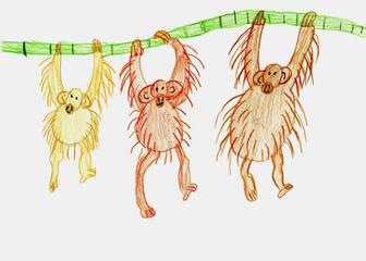 Three monkeys hang on a branch. Children's drawing