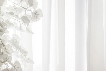 White leaves against a white curtain background air
