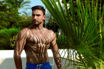 beautiful man standing next to palm tree leaves with sexy shadows. attractive Model with  muscular body poses next to palm. Strong male with sexy look and hot torso