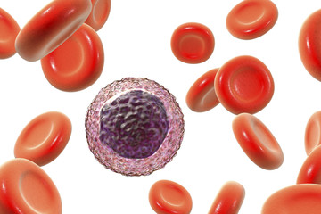 Lymphocyte surrounded by red blood cells
