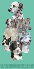 Postcard with dogs of different breeds-6
