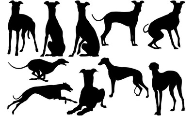 Greyhound Dog svg files cricut,  silhouette clip art, Vector illustration eps, Black Dog  overlay