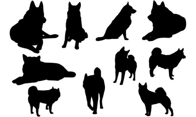Norwegian Elkhound Dog svg files cricut,  silhouette clip art, Vector illustration eps, Black Dog  overlay