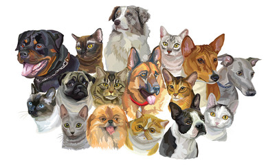 Set of dogs and cats breeds