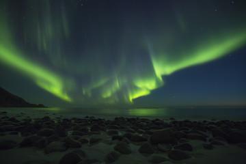 Aurora Borealis, northern lights at Utakleiv beach in summer night, Lofoten islands, Norway