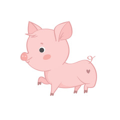 vector single pig character on white background