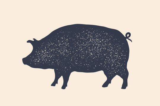 Pig, pork. Vintage logo, retro print, poster for Butchery meat shop, pig silhouette. Logo template for meat business, meat shop. Isolated black silhouette pig on white background. Vector Illustration