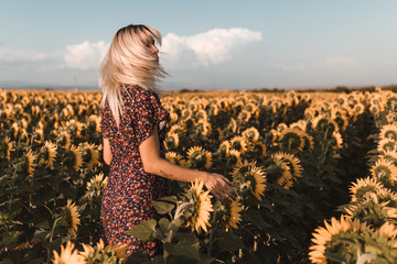 Rear view of young blonde woman spins her head in the middle of countryside of sunflowers in a sunset