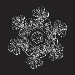 This vector illustration based on macro photo of real snowflake: complex stellar dendrite snow crystal with hexagonal symmetry, elegant, ornate shape and six short, broad arms with side branches.