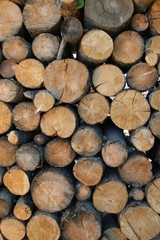 Keuken foto achterwand Brandhout textuur pile of wood logs large and small