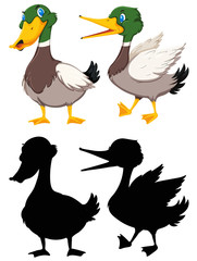 Set of colour and silhouette duck