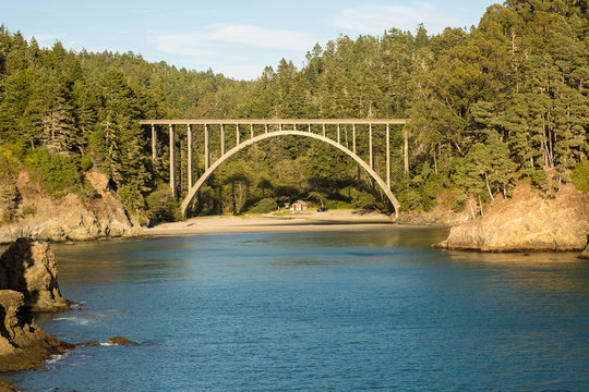 Bridge, cliffs, and redwood forest in Mendocino, California
