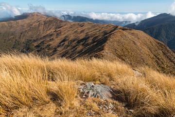 Paparoa Ranges in Paparoa National Park, West Coast, South Island, New Zealand